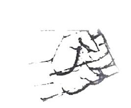 Logo Physio-Fit3