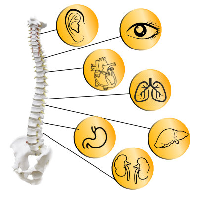 Osteophatie